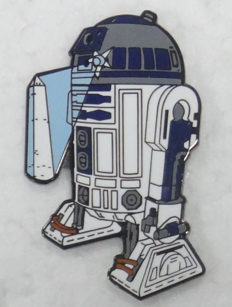 2012 DCSWCC Charity Pin